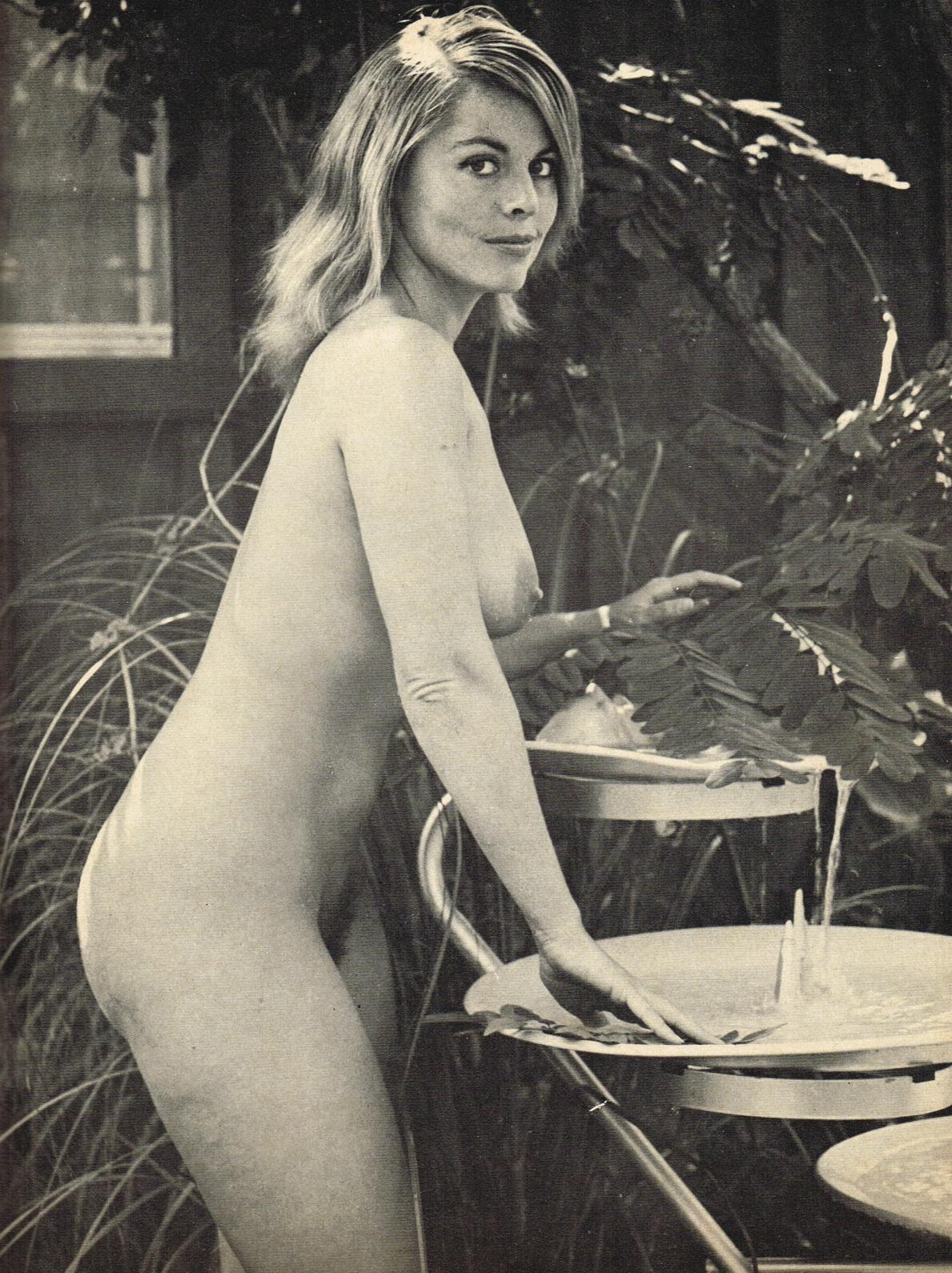 Nudist Magazin Dianne Webber