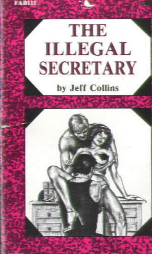 THE ILLEGAL SECRETARY by Jeff Collins