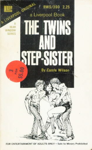 THE TWINS AND STEP-SISTER by Carole Wilson