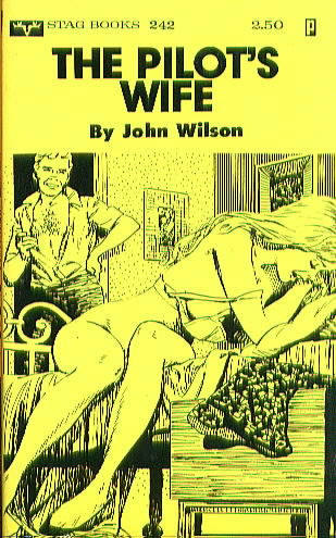 THE PILOT'S WIFE by John Wilson